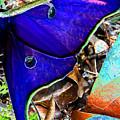 Luna Moth False Color Work One by David Lee Thompson