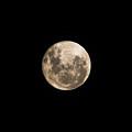 Lunar Perigee by Andrew Paranavitana