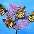 Butterfly Feeding Frenzy by Karen Jane Jones