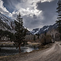 Lundy Lake Road by Cat Connor