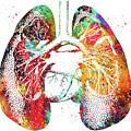 Lungs And Heart by Erzebet S