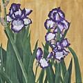 Luscious Iris by Marla Saville