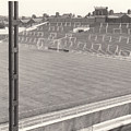 Luton Town - Kenilworth Road - Kenilworth Terrace North Goal 1 - Bw - August 1969 by Legendary Football Grounds