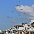 Luxury Beach Houses Malibu by David Zanzinger