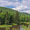 Lyman Run State Park by Guy Whiteley