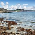 Lyme Regis Seascape 5 - October by Susie Peek