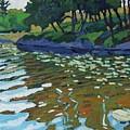 Lyndhurst Lake by Phil Chadwick