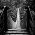 Lynn Canyon Bridge by Tom Buchanan
