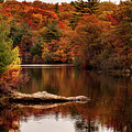 Lynn Woods Birch Pond Fall Colors by Jeff Folger