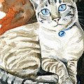Lynx Point Siamese Cat Painting by Dora Hathazi Mendes