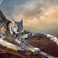 Lynx Spirit by Carol Cavalaris