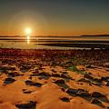 Lyons Park Sunrise by Jeff Folger
