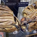 M N M Boys' Gloves by Rob Hans