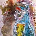 Macaw Parrot by Derek Mccrea