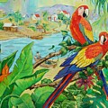 Macaws by Dianna Willman