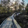 Macgregor Point Boardwalk by Richard Kitchen