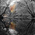 Mackinaw Fall Reflection by Dylan Punke