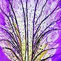 Macro Iris Petal by Monique Faella