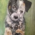 Macy As A Puppy by Diane Donati