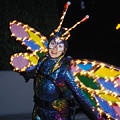 Madame Butterfly At Disney by Carl Purcell