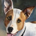 Terrier  by FayBecca