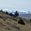 Madison Buffalo Jump State Park In Spring by Bruce Gourley