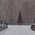 Madison Square Park In The Snow At Christmas by Chris Lord