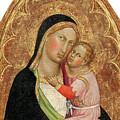 Madonna And Child by Martino di Bartolomeo