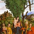 Madonna And Child With Saints by Girolamo dai Libri