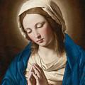 Madonna At Prayer by Sassoferrato