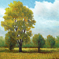 Madrona Marsh Trees Plein Air by Douglas Castleman