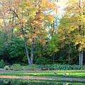 Mae Stecker Park In Shelby Township Michigan by Anita Hiltz