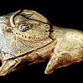 Magdalenian Carved Bison  by Weston Westmoreland
