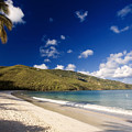 Magens Bay Morning St Thomas Us Virgin Islands by George Oze