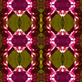 Magenta Crystal Pattern by Amy Vangsgard