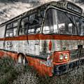 Magic Bus by Wayne Sherriff