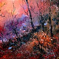 Magic Forest  by Pol Ledent