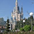 Magic Kingdom Castle by Carol  Bradley