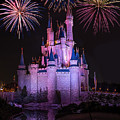 Magic Kingdom Castle Under Fireworks by Chris Bordeleau