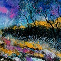 Magic Morning Light by Pol Ledent