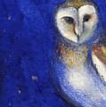 Magical Night One by Nancy Moniz