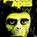 Magical Planet Of The Apes by Paul Van Scott