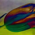 Magical Tulip by Arlene Carmel