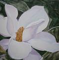 Magnificent Magnolia by Shirley Braithwaite Hunt