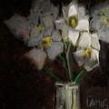 Magnolia 1 by Carlos Camus