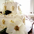Magnolia Cake Three by Angie Covey