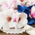 Magnolia Flowers by Anastasy Yarmolovich