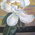 Magnolia by Gloria Byler