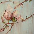 Magnolia I by Barbara Andolsek