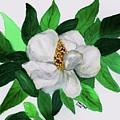 Magnolia I by Joan Zepf